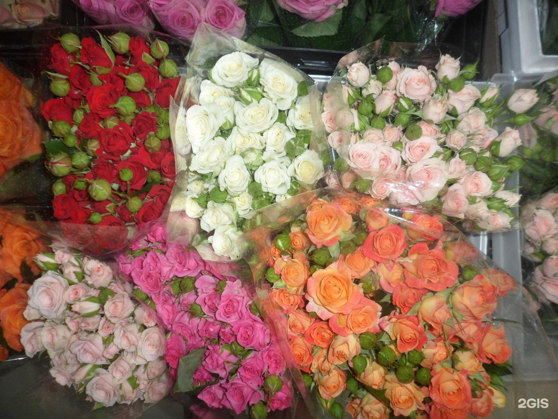 Розы из кадошкино фото 2