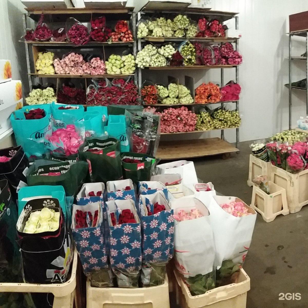 Цветы доставка, уфа оптовые поставки цветов