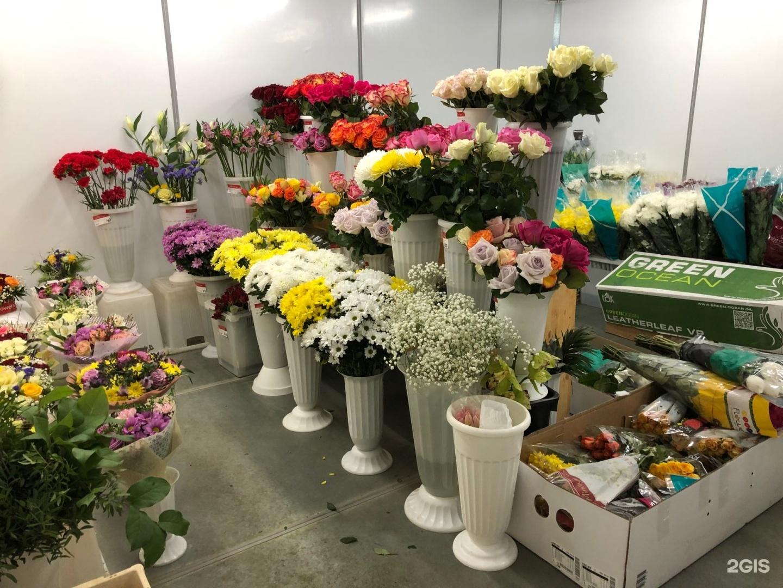 Оптовые склады цветов днепропетровск, цветов