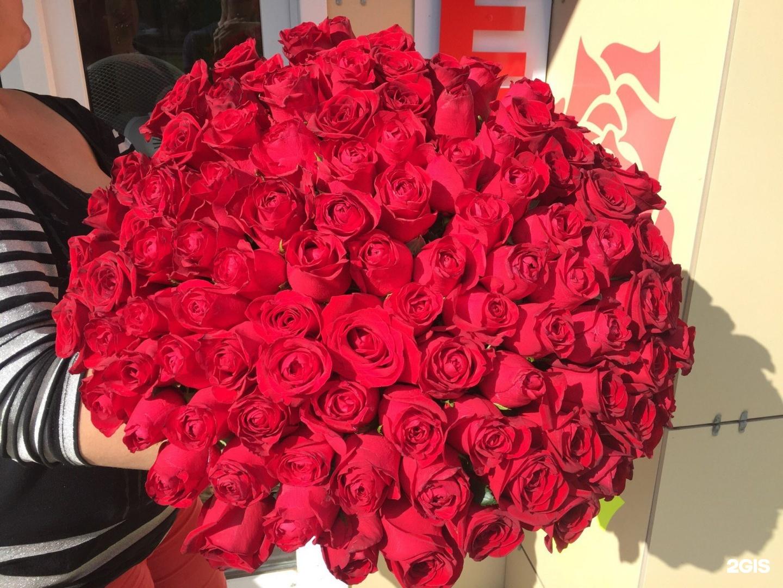 красивый самый большой букет живых роз фото важно