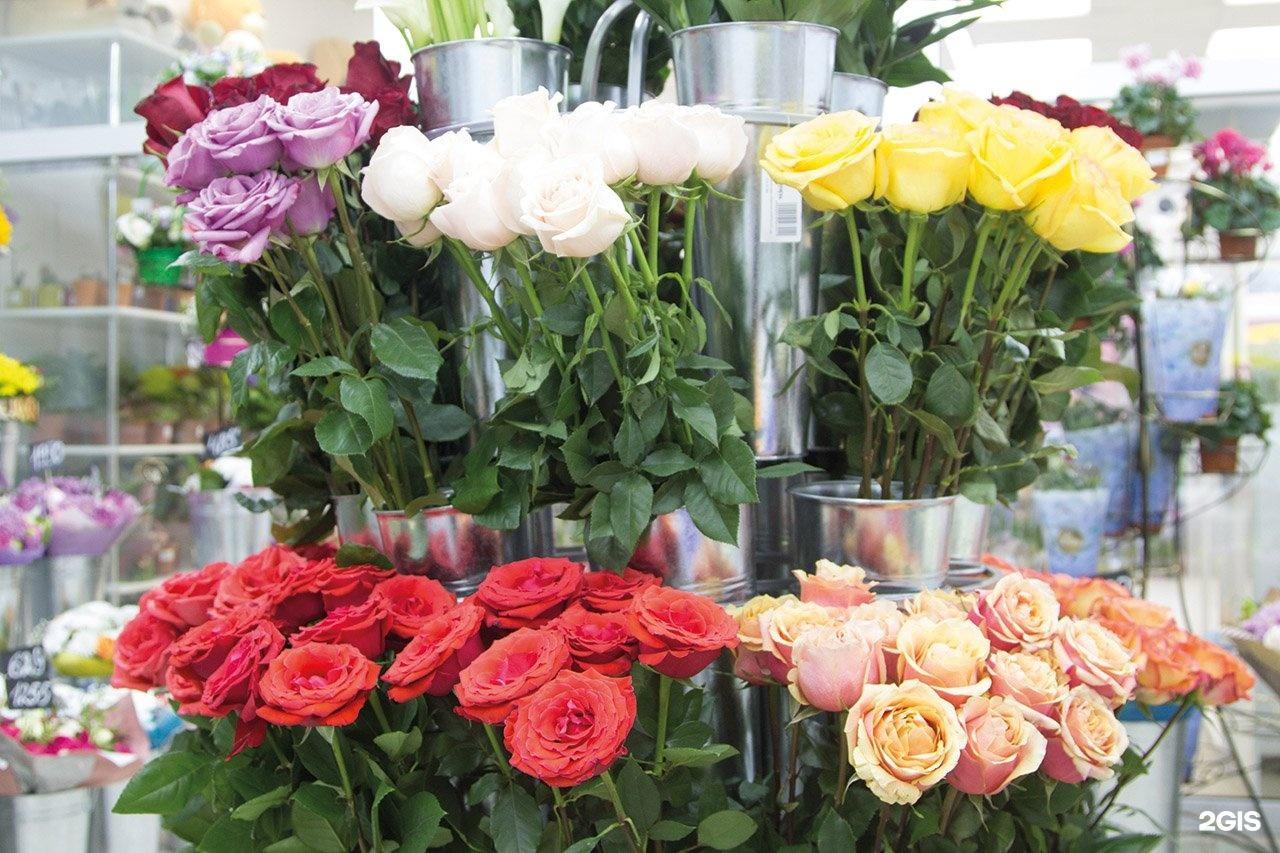 Оптовая магазины по продажа цветов в нижнем новгороде, цветов марьино москва