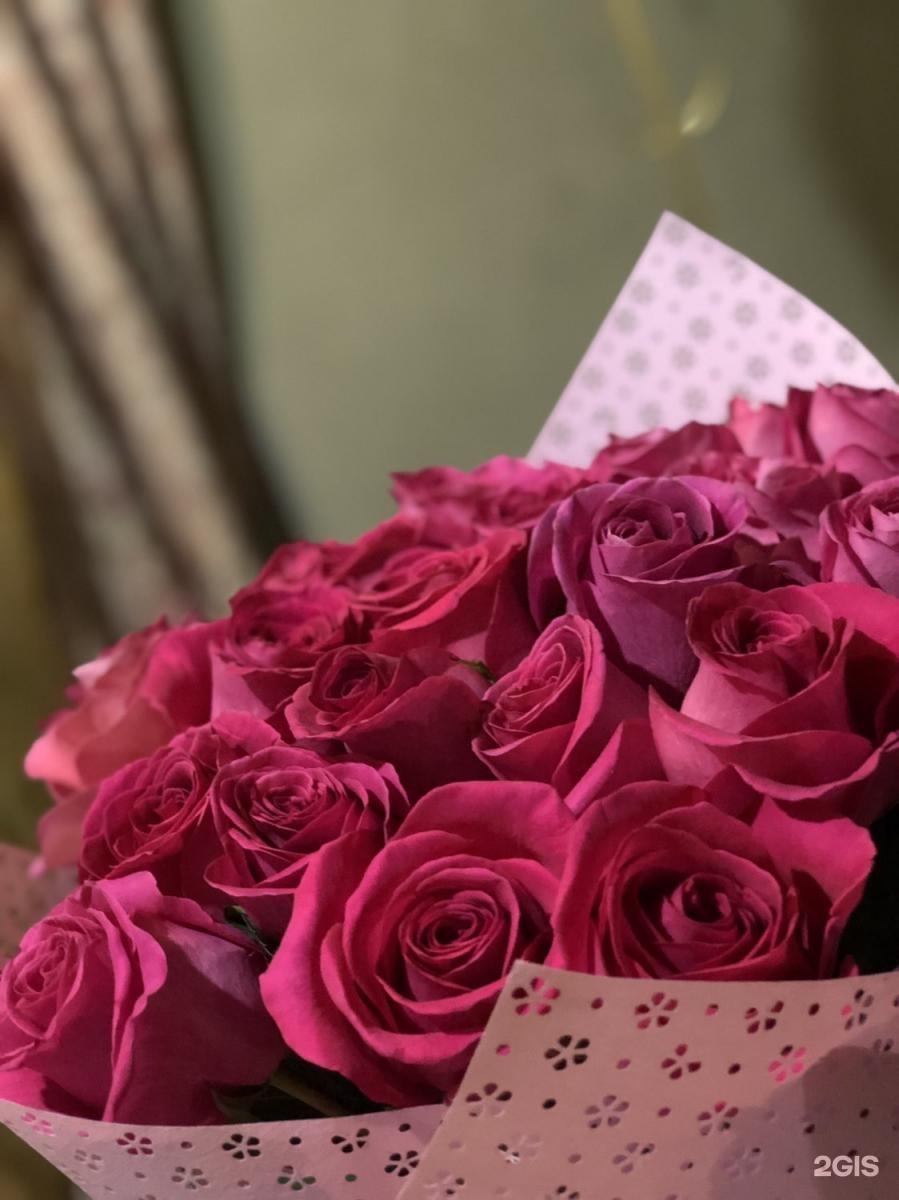 поздравление от донны розы маленькой кухни