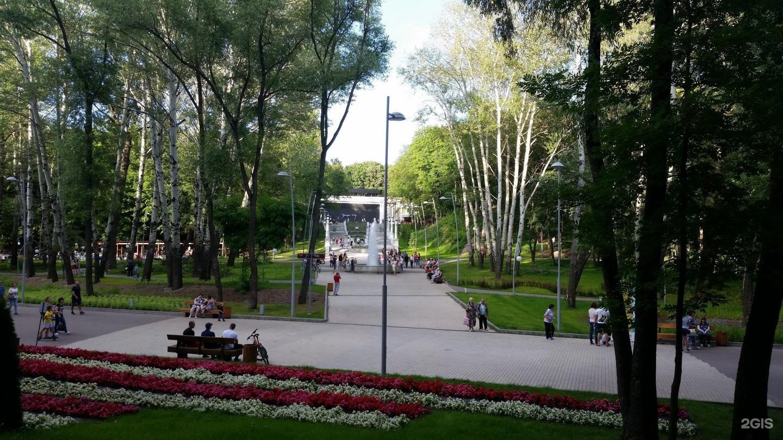 Воронеж фото центрального парка