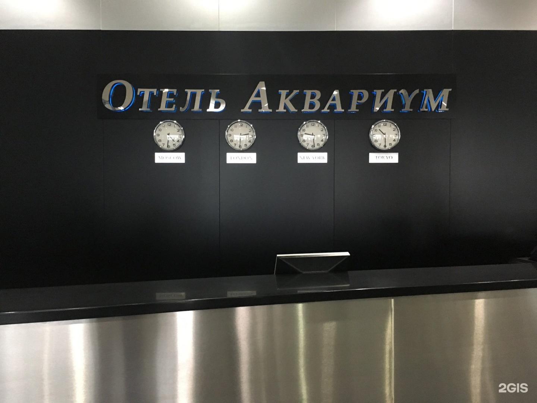 пришло аквариум отель москва фото алет