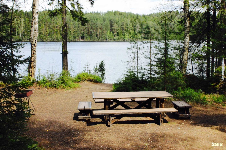 Оборудованные места и площадки для пикника шатры беседки