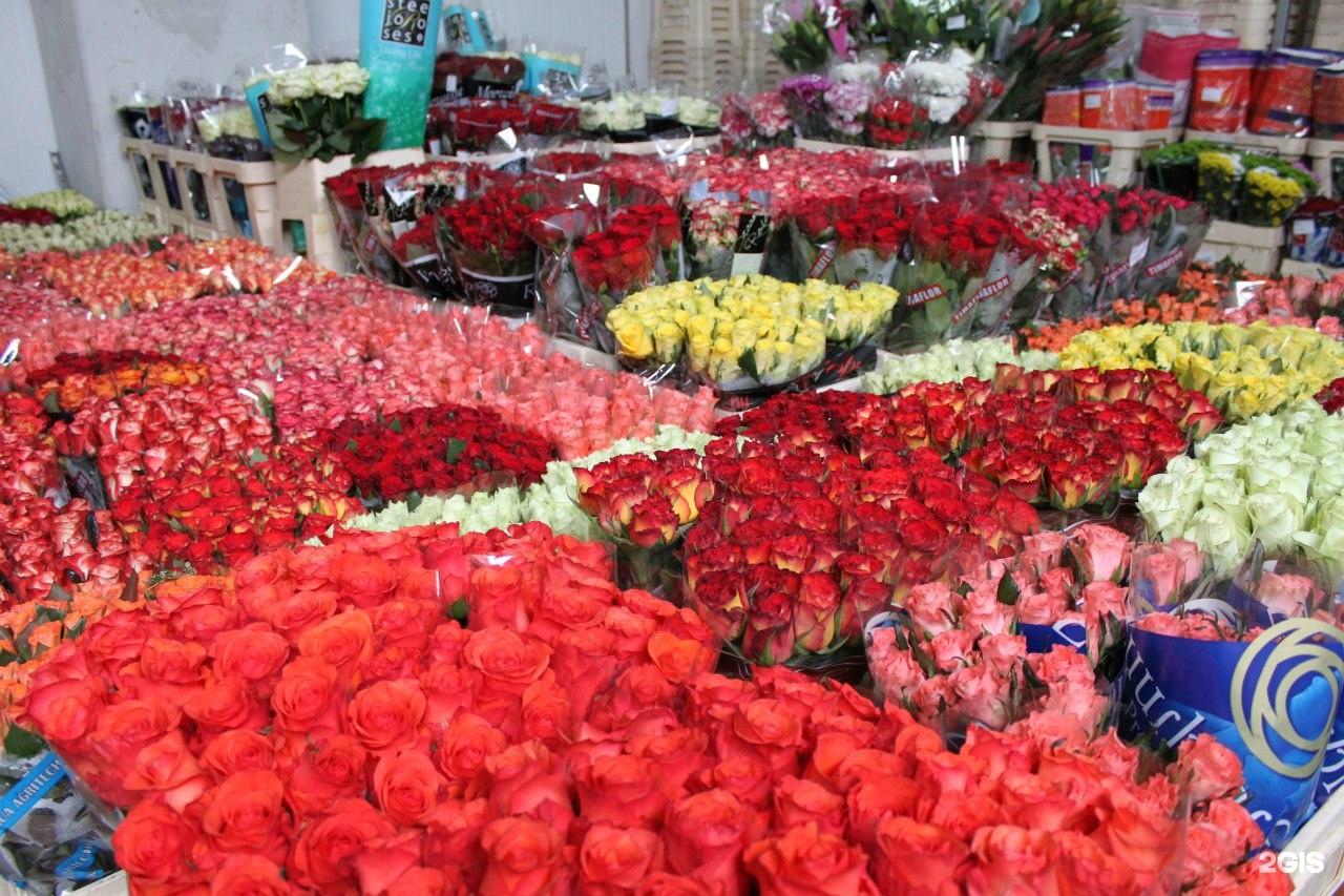 Цветы оптом в г стерлитамаке, цветы