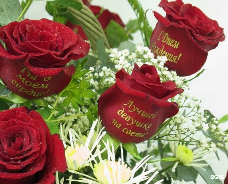 Картинки надписями роз
