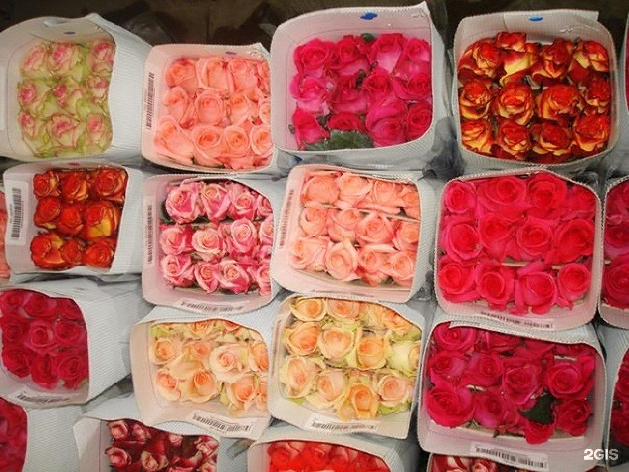 Цветы оптом продажа доставка москва