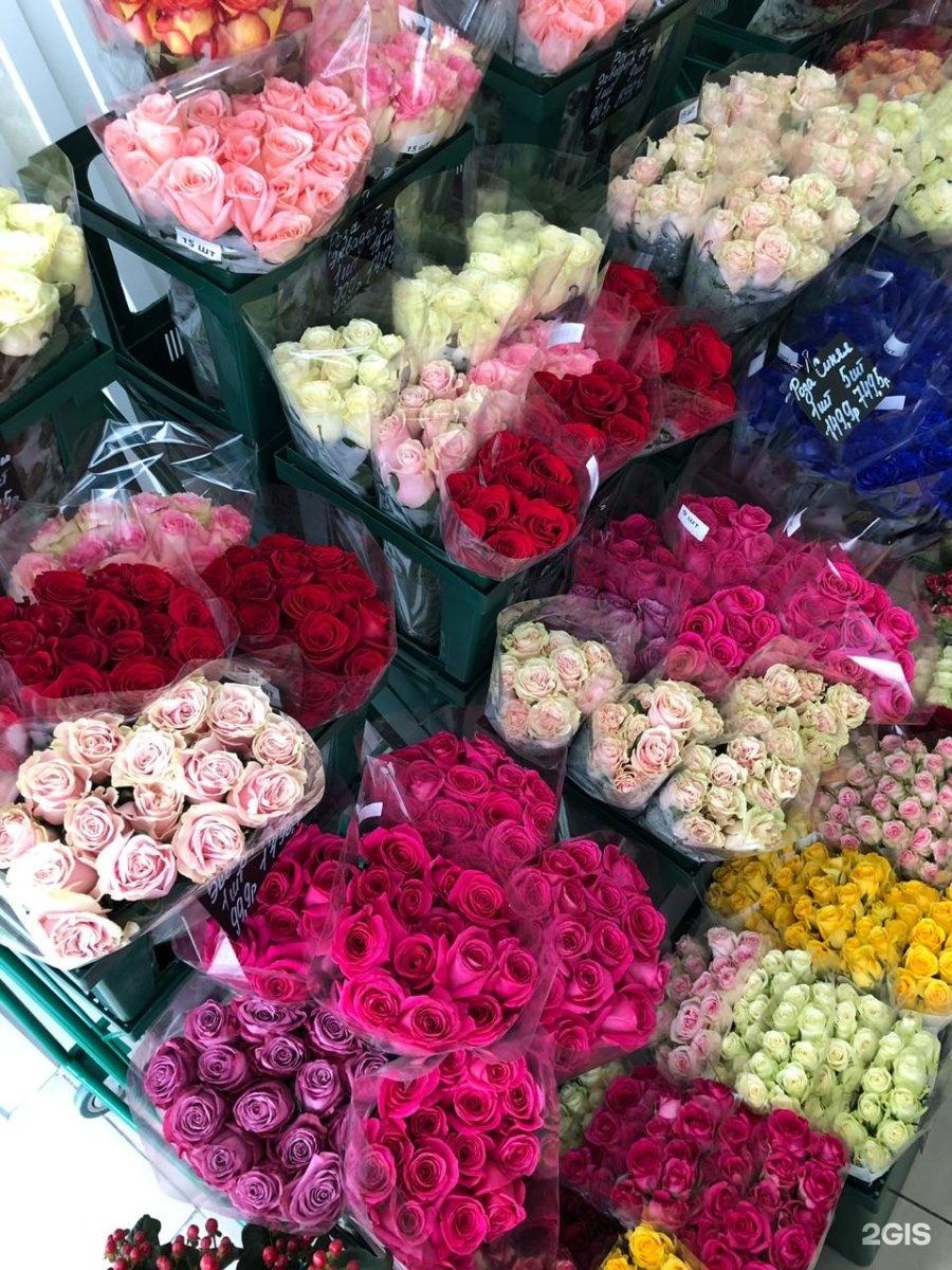 Невесты, опт база цветов волгоград