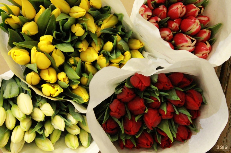Галантус калуга купить цветы, гвоздики