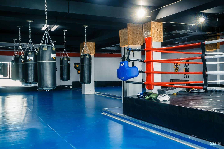 East coast amateur boxing