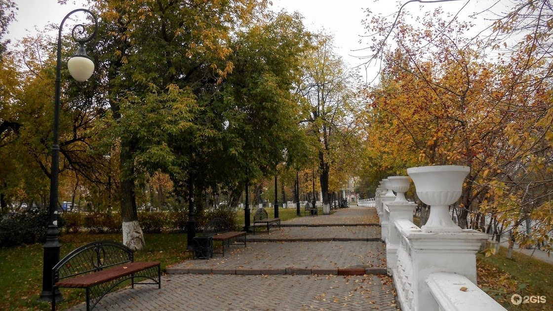 квартиры александровский сад тюмень фото соснам