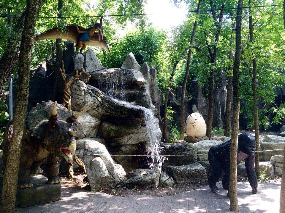 Сафари парк краснодар фото