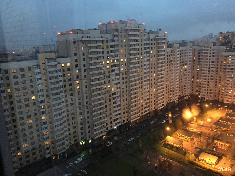Фадеенко заставляет дышать экскрементами петербуржцев